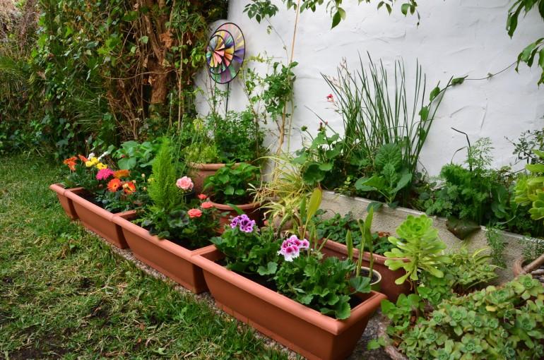 Ideas Para Hacer Mi Casa Best Como Construir Una Casa De Como Hacer Mi  Jardin