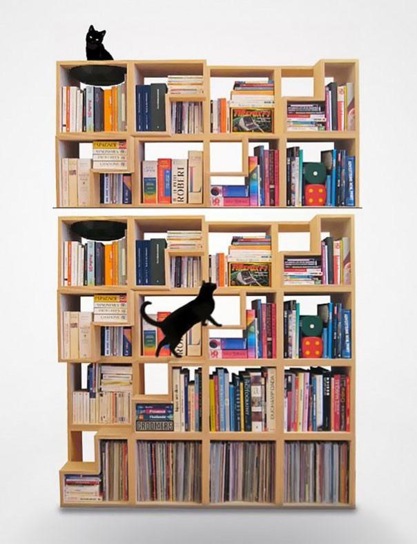 estantería gatos