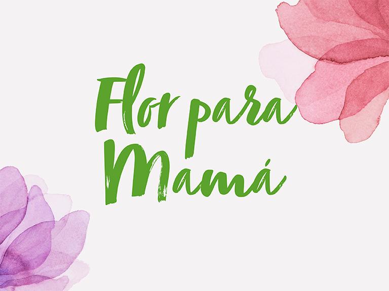 Promociones Flor para mamá Islazul